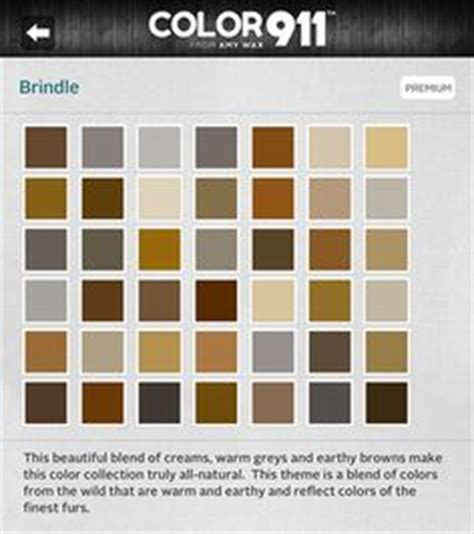 paint colors on paint valspar paint colors and large window treatments