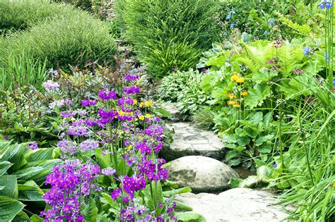 cottage gardens ask a pro q a starting an cottage garden better