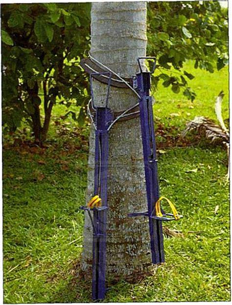 alat pemanjat pokok kelapa ingin tahu teknologi baharu kelapa teknologi utusan