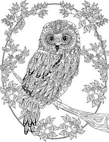 coloring pages to color for free owl coloring pages for adults free detailed owl coloring