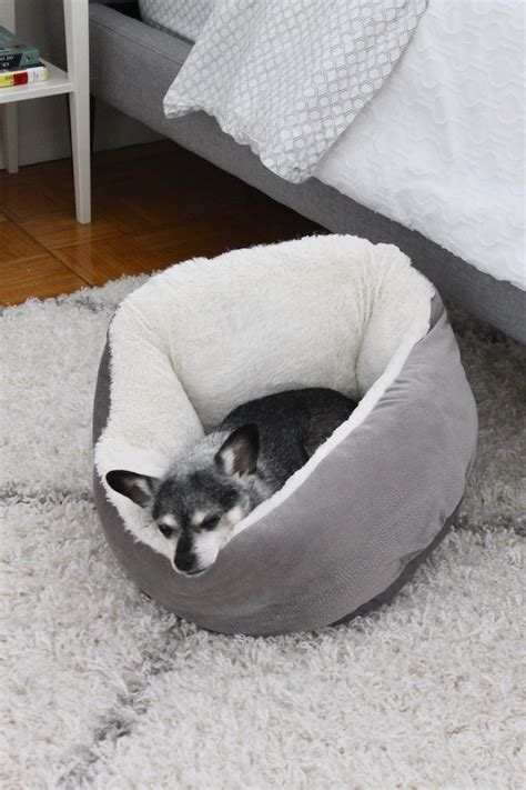 tj maxx dog beds a tour of our nyc apartment creating a cozy bedroom