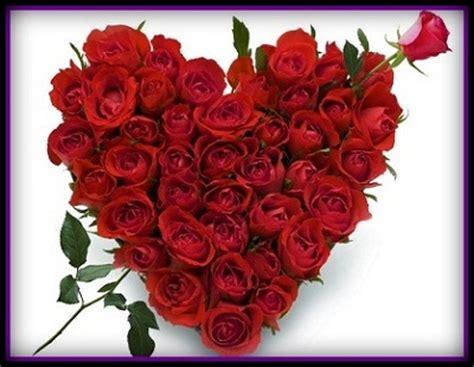 imagenes rosas rojas naturales imagenes de arreglos florales naturales arreglos
