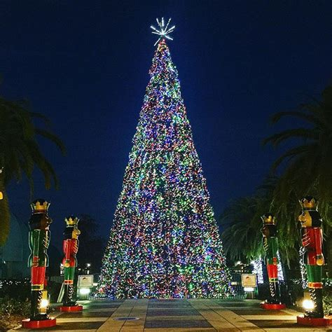 lake eola christmas tree video 21 awesome photos from your orlandoweekend