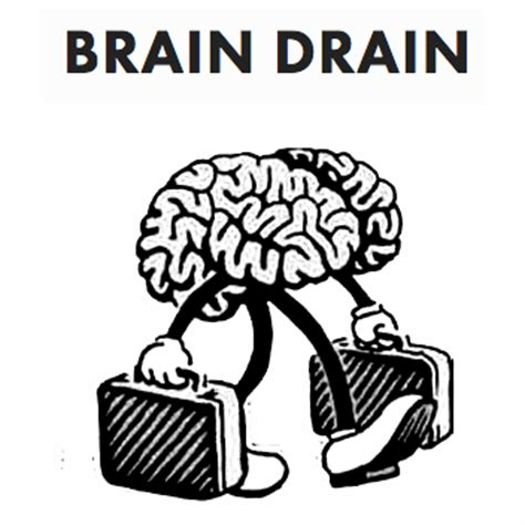brain drain is better than brain in drain brain drain