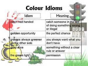 color idioms lesson 5 colour idioms ong s