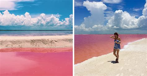 naturally pink lagoon  mexico    instagram