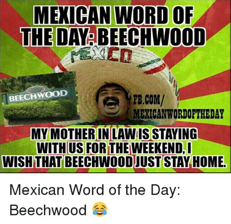 Best Memes Of The Day - 25 best memes about mexican words of the day mexican
