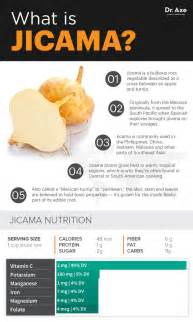 What Is The Interior Of Mexico Like Jicama Full Of Prebiotic Fiber It Helps Weight Loss Dr
