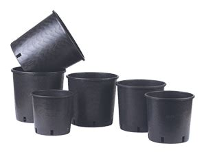 vasi vivaio containerschiffe