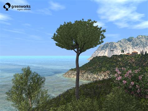 mediterranean trees shrubs xfrogplants pz3