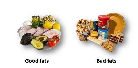 healthy fats nutrients fish oils the essential nutrients balance by deborah hutton