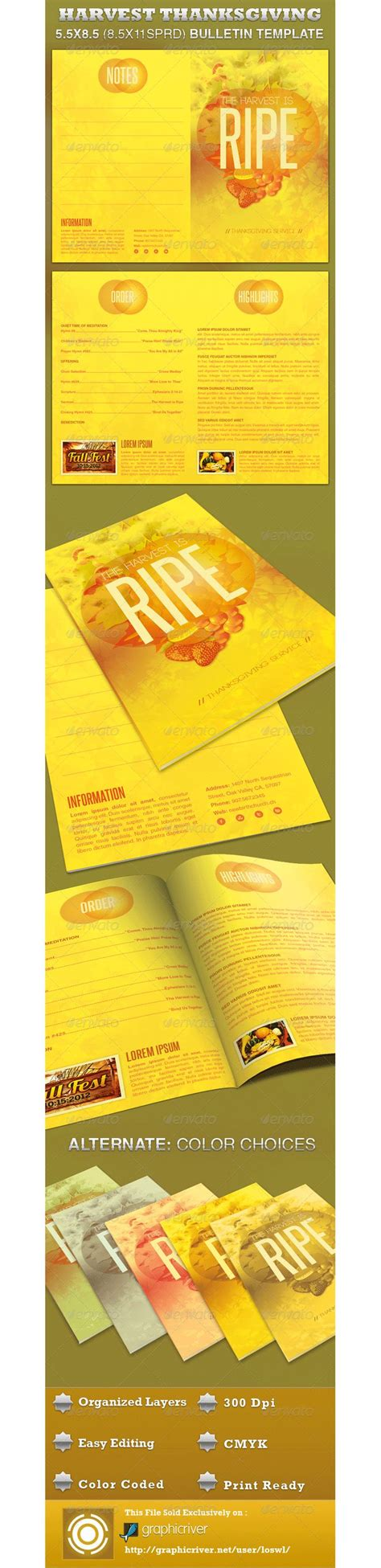 informational flyer template new informational flyer template templates design