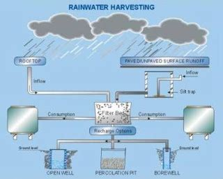 strategic harvest system how to through the buck management glass ceiling books harvesting a strategy for water saving