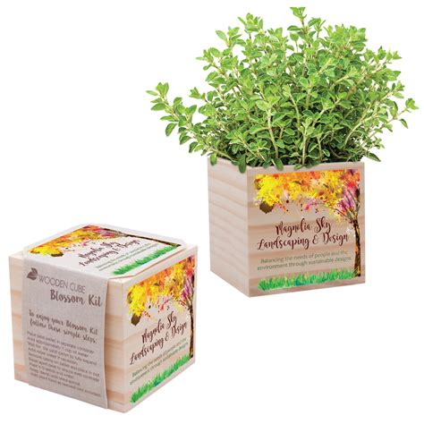 wooden cube blossom kit  web special   month