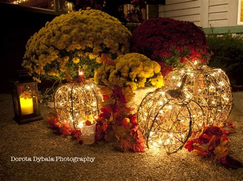 Outdoor Lighted Pumpkin Decorations 168 Best Images About Unique Garden Ideas On Pinterest Gardens Window Boxes And Outdoor