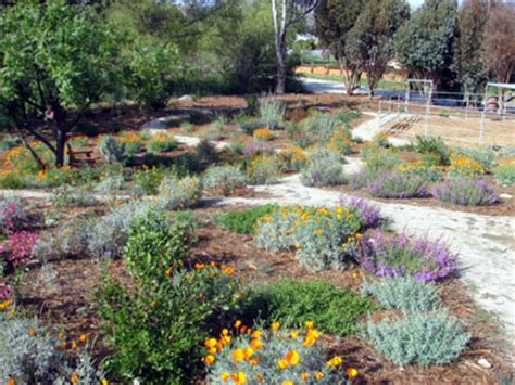 Rubin Garden Of by San Diego Wildfires Fireproof Your Property
