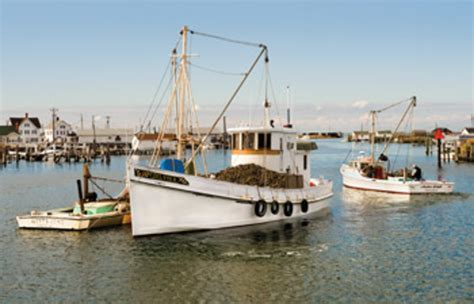 oyster bay boat shop the beauty of buyboats soundings online