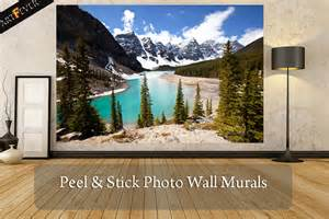 Mural Wall Paper photo wall murals peel amp stick feature wallpaper murals