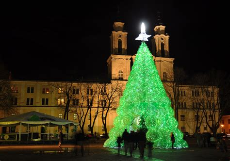 gorgeous green christmas tree is made from 40 000 recycled
