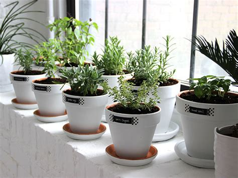 diy herb garden planter diy modern minimalist white planters made remade