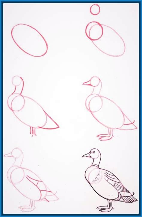 imagenes para dibujar paso a paso dibujos faciles para aprender a dibujar con facilidad