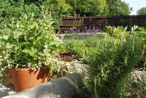 community garden design linette applegate gardens milton keynes garden design linette applegate gardens
