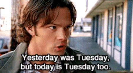 groundhog day supernatural and real supernatural lines anj s fan