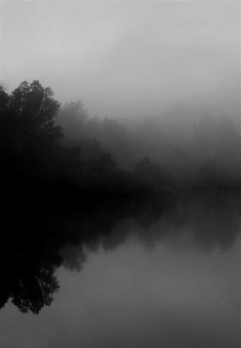 ...into the #mist #black and #white | art, color and