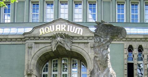 berlin zoo 2014 zoo aquarium berlin prima haustiershop de