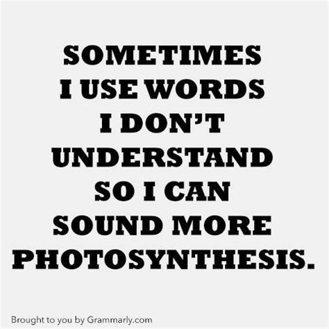 Grammarly Memes - saturday morning funnies this week in internet memes
