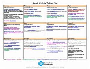 9 Wellness Recovery Action Plan Exles Pdf Wellness Template