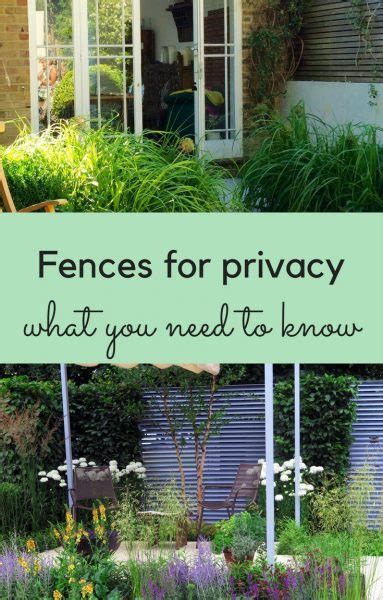 how to get privacy in your backyard fences for privacy 9 great ideas for garden screening