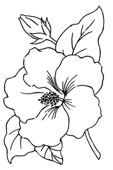 simple flowers flower illustration simple easy flowers to