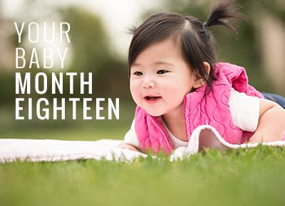 18 Months Mba Uk by 18 Month Baby Development Child Development Guide