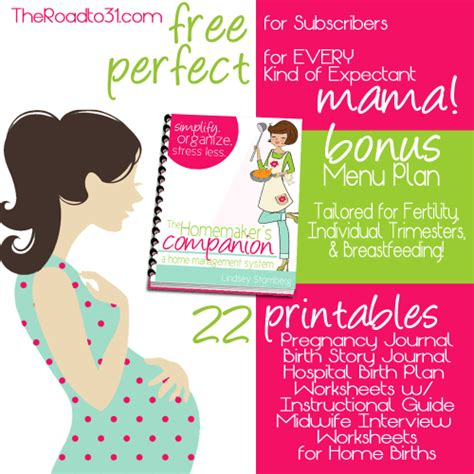 free pregnancy birth planner 22 printables - Free Pregnancy Giveaways