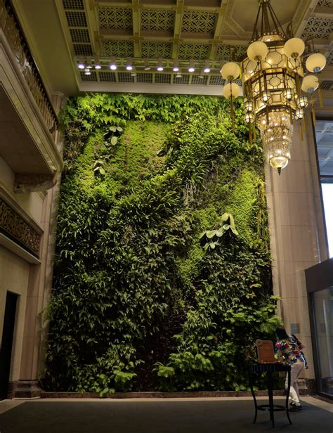 mur vegetal blanc