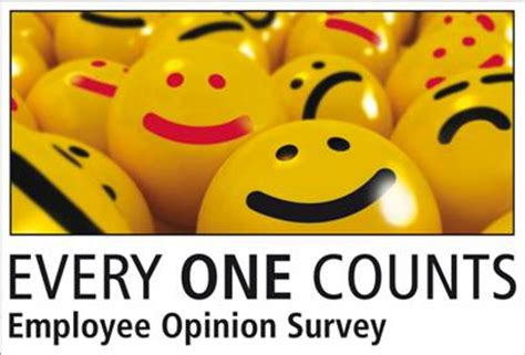 Opinion Survey - dsc employee opinion survey 2013
