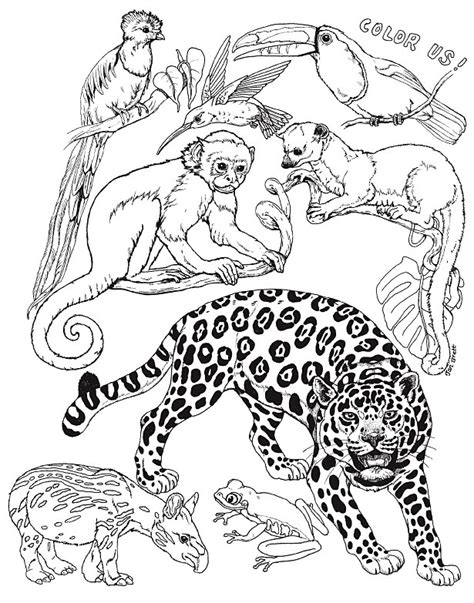 david shannon coloring pages az coloring pages