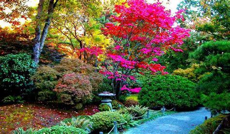 imagenes de paisajes hermosos para descargar fondo escritorio bonito parque