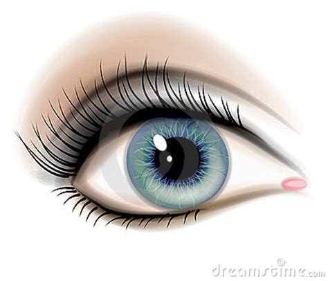 female human eye illustration royalty  stock