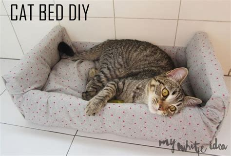 diy cat beds cat bed diy diy for your pet pinterest