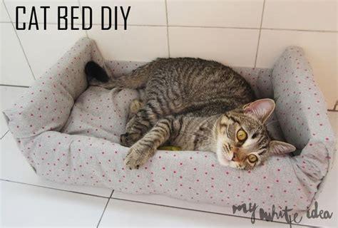cat bed diy cat bed diy diy for your pet pinterest