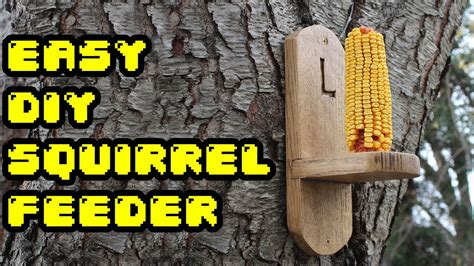 gettin squirrely easy diy squirrel feeder youtube