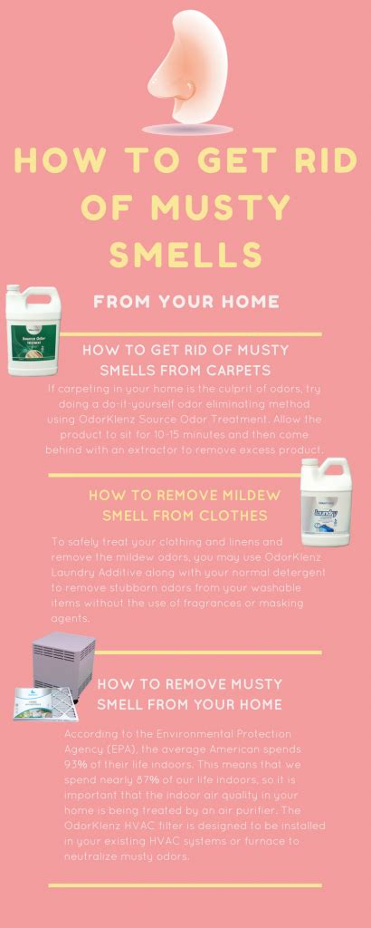 how to get smoke smell out of sofa how to remove musty smell from carpets home fatare