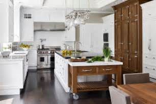 professional chef s kitchen traditional kitchen