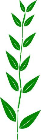 Flower Picture Downloads - green leaf clipart clipart image 10267