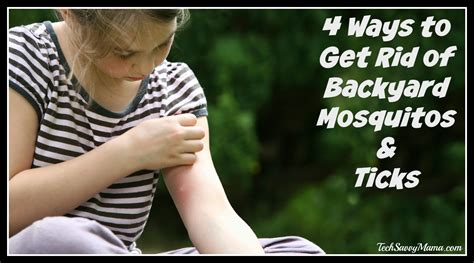 how to rid backyard of mosquitoes 4 ways to get rid of backyard mosquitos and ticks tech
