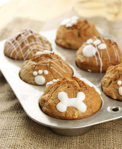 healthy snacks for dogs 15 healthy treats for your pup healthy treats and