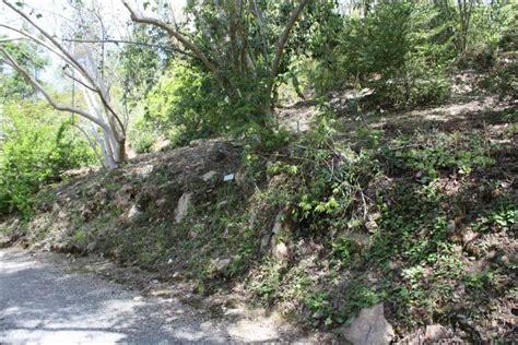 Quarry Hill Botanical Garden Sonoma County Quarryhill Botanical Garden