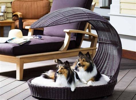 most comfortable dog bed best dog beds your dog s most comfortable place